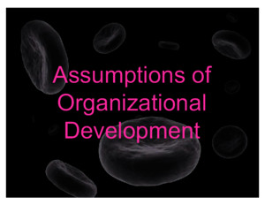 Assumptions of Organizational Development (Nursing Administration 3)