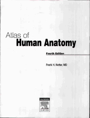 Atlas of Human Anatomy Netter