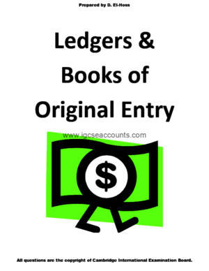 Igcse Accounting Books of Original Entry and Ledgers f