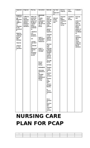 Nursing Care Plan for Pcap
