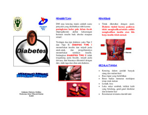 Print Leaflet Diabetes Melituspdf