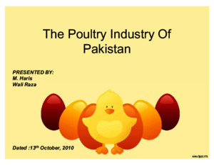 A Complete Analysis of the Poultry Industry of Pakistan (Mohammad Ali Jinnah University, Karachi)