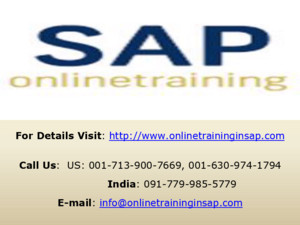 SAP Security Training Course Online and Placement - Online Training in SAP
