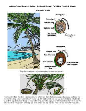 A Long-Term Survival Guide - My Quick Guide to Edible Tropical Plants
