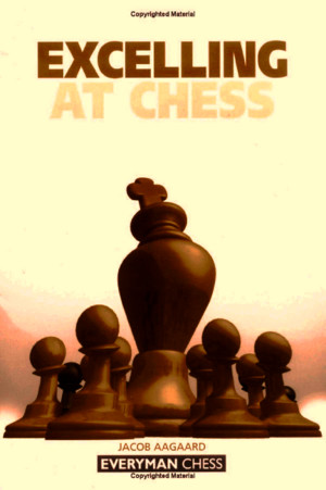 Aagaard - Excelling at chesspdf