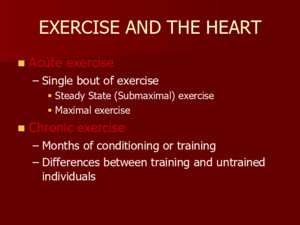 Acute exercise Acute exercise –Single bout of exercise  Steady State (Submaximal) exercise  Maximal exercise Chronic exercise Chronic exercise –Months