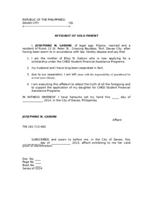 Affidavit of Solo Parent Template