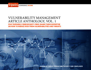 Vulnerability Management Article Anthology, Vol 1